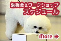 勉強会・ワークショップスケジュール