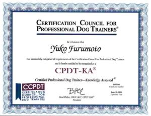 CPDT-KACertificate
