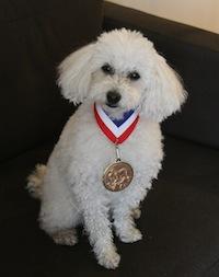 試験に合格したら先生からメダルをいただきました