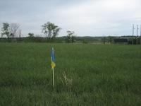 スタート地点の旗