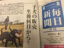毎日新聞夕刊2015-02-05